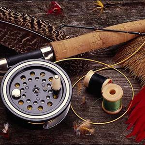 Охотничьи и рыболовные магазины Далматово